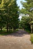 走的城市公园 免版税库存照片