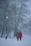 走的妇女在多雪的公园 免版税库存照片