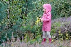 走的小女孩与双筒望远镜在夏天森林里 免版税库存图片