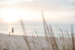 走的成人和儿童剪影背景在一个沙滩的在轻淡优美的色彩下 库存图片