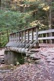 走的桥梁 库存图片