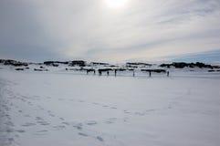 走的游人,黛提瀑布,塞尔福斯,瀑布,雪,冰岛 图库摄影