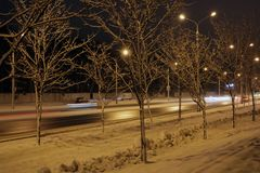 走的美丽的公园在晚上在冬天 免版税图库摄影