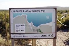 走的足迹映射在蓬塔Loma,阿根廷 库存图片
