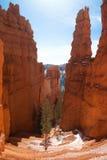 走的足迹豪华楼梯在布莱斯峡谷国家公园,犹他,美国 免版税库存图片