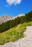 走的路线向奥林匹斯山 免版税库存图片