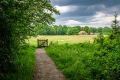 走的towars一个典型的荷兰农场在上艾瑟尔省6月Twente, 库存照片