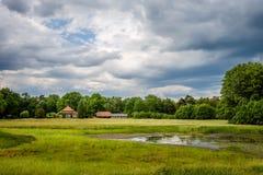 走的towars一个典型的荷兰农场在上艾瑟尔省6月Twente, 免版税库存照片