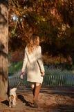 走美丽的女孩她的狗骑士国王查尔斯狗在公园 免版税图库摄影