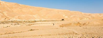 走背包徒步旅行者的人远足谷山沙漠足迹全景 免版税图库摄影