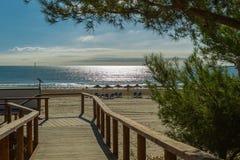 走路到海滩 免版税库存照片