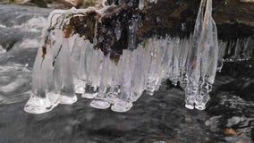 走路的冰柱 在冬天小河上的冻结的下落创造了美好的冰柱 在泡沫似的冬天溪上的闪烁的冰 划分为的结构树 股票录像