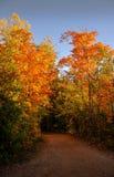 走这串足迹在秋天期间在蒙特利尔,魁北克,加拿大 免版税库存照片