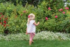 走通过一个玫瑰园的年轻人赤足女孩 库存图片