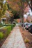 走通过住宅邻里在一多云秋天天;在地面上的五颜六色的落叶;帕洛阿尔托,旧金山 免版税图库摄影