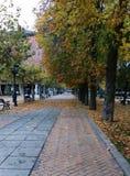 走通过公园一个秋天下午 免版税库存照片