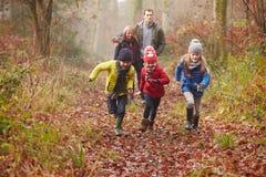走通过冬天森林地的家庭 图库摄影