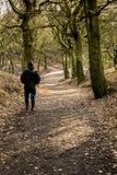 走通过森林在Tandle小山, Royton 免版税库存图片