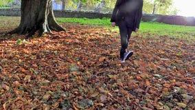 走通过森林的人踢叶子 库存照片