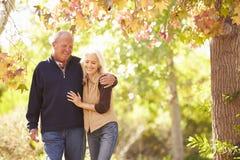 走通过秋天森林地的资深夫妇 免版税库存照片