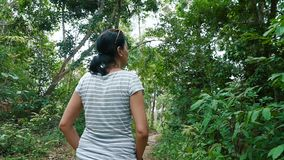 走通过美丽的密林的妇女 股票录像