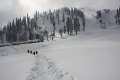 走通过雪的人们 免版税库存图片