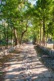走道低谷被放弃的导师Mahesh信奉瑜伽者聚会所 免版税库存照片
