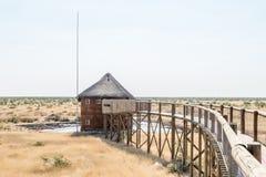 走道和皮在waterhole在Olifantsrus休宿所 免版税库存图片