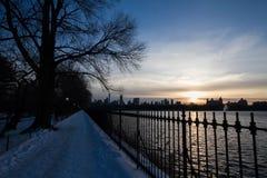 走道和篱芭有蓝色日落天空的 库存照片