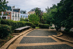 走道和长凳在子午小山在华盛顿特区停放, 库存图片