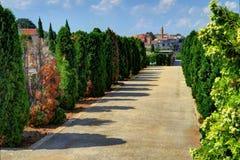 走道在公墓, Labin,克罗地亚中世纪镇,在bac中 免版税库存照片