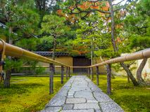 走道在日本庭院里 库存图片