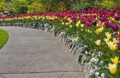 走道在春天庭院里 库存图片