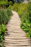 走道在Plitvice National湖 免版税库存照片