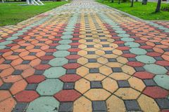 走道块石头在公园和拷贝空间的颜色水泥增加与浅景深的文本精选的焦点 免版税库存照片