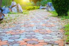 走道块石头在公园和拷贝空间的颜色水泥增加与浅景深的文本精选的焦点 图库摄影