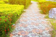 走道块石头在公园和拷贝空间的颜色水泥增加与浅景深的文本精选的焦点 库存图片