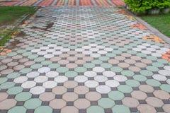走道块石头在公园和拷贝空间的颜色水泥增加文本 免版税库存图片