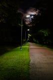 走道车道道路在晚上,被月光照亮公园胡同 库存图片
