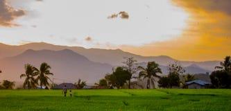走领域在日落弗洛勒斯,印度尼西亚的妇女和孩子 免版税库存照片