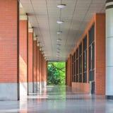 走廊3的透视 免版税图库摄影
