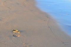起动,在沙子的鞋子印刷品与太阳光 在波儿地克的海滩的足迹 库存照片