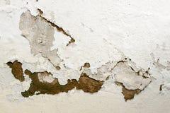 起泡和剥油漆由于上升的潮湿 免版税图库摄影