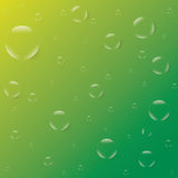 起泡在黄绿背景传染媒介的露滴 免版税库存图片