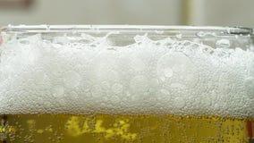起泡沫在玻璃觚关闭的啤酒  股票录像