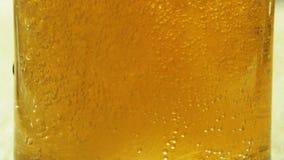 起泡沫在玻璃觚关闭的啤酒  股票视频