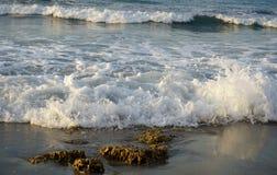 起泡沫的波浪在海岸滚动 库存图片
