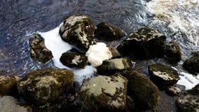 起泡沫的水在瀑布结束时 免版税图库摄影