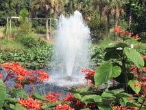 起泡的喷泉 免版税库存图片