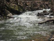 起泡的溪 库存图片